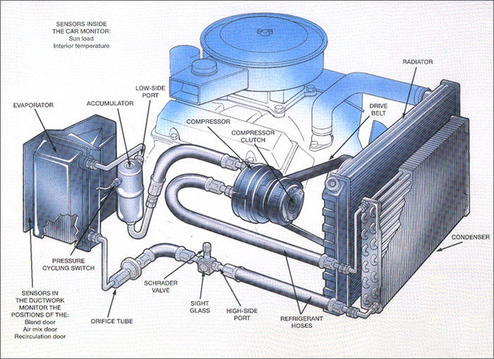 1970 Chevy Truck Engine Diagramon 1968 Chevelle Wiring Diagram